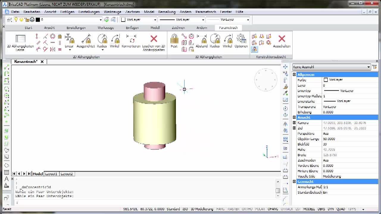 3D Parametrik Konzentrisch